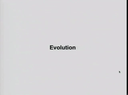 Preview image for video: Evolution