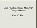 Preview image for video: BIOL 10232 08.03.11