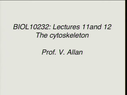 Preview image for video: BIOL 10232 10.03.11