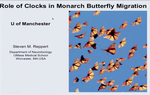 Preview image for video: Monarch Butterfly Migration