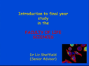 Preview image for video: Introductory Info Yr 3.